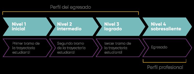 Niveles de concreción de las competencias a lo largo del proceso de formación de los estudiantes